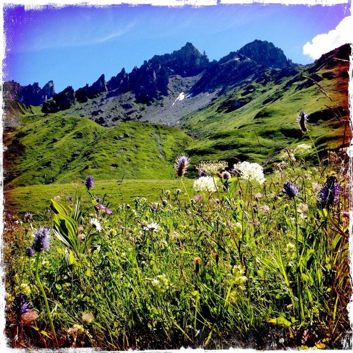 randonnee-beaufortain-lac-amour 3