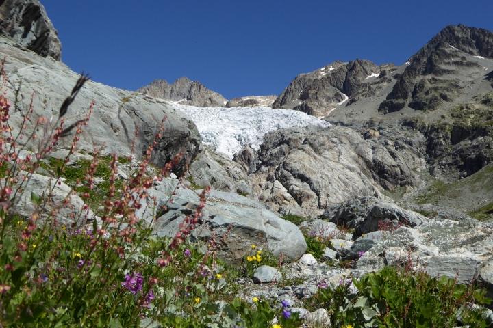 parc des ecrins-glacier blanc-3