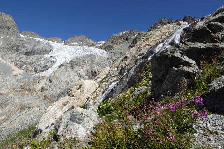 parc des ecrins-glacier blanc-4