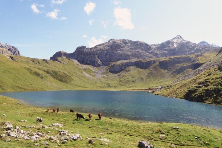 alpage du lac de la Plagne