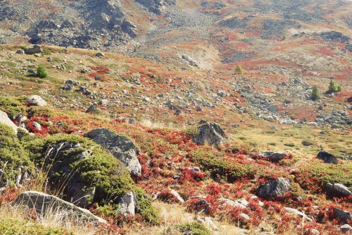 automne vallée de la Clarée