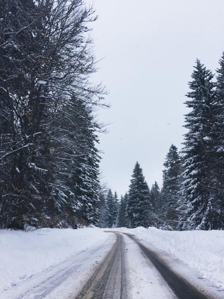 Sur la route du Revard